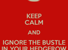 keep-calm-and-ignore-the-bustle-in-your-hedgerow-3
