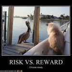 risk v. reward